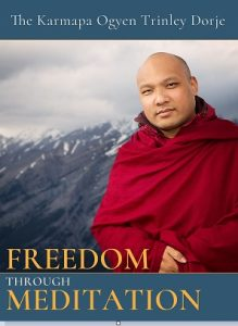 Freedom Through Meditation Book Cover